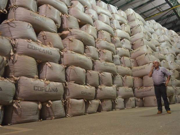 Walter Luiz de Souza verifica sacas de amendoim no maior armazém climatizado do mundo na cooperativa em Jaboticabal, SP (Foto: Adriano Oliveira/G1)