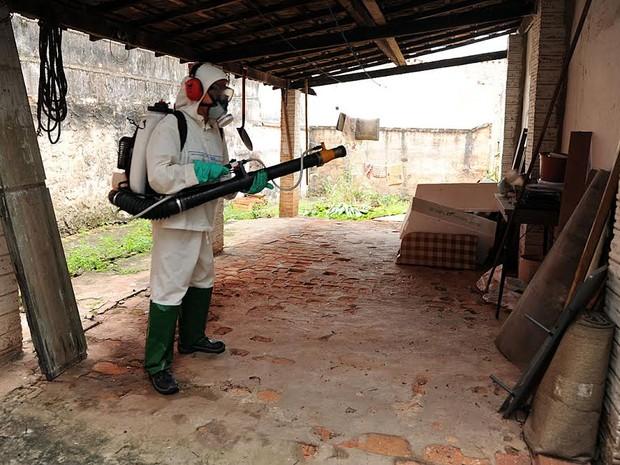 Agentes da Secretaria de Saúde fizeram a nebulização de imóveis no domingo (Foto: Adilson Silveira/Prefeitura)