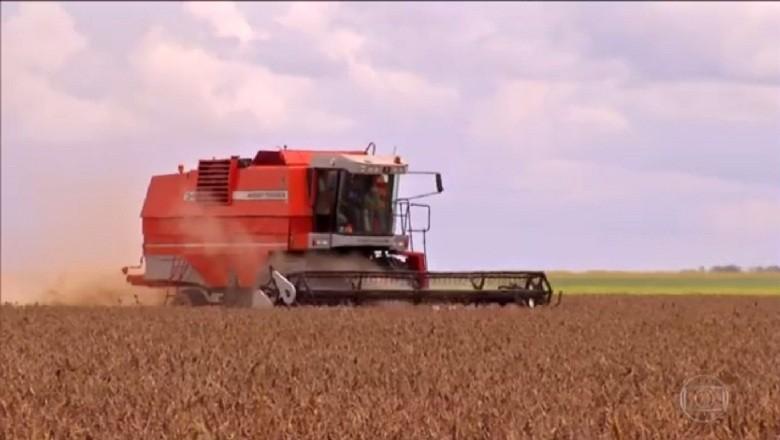 economia-agropecuaria-video-globo (Foto: Reprodução/TV Globo)