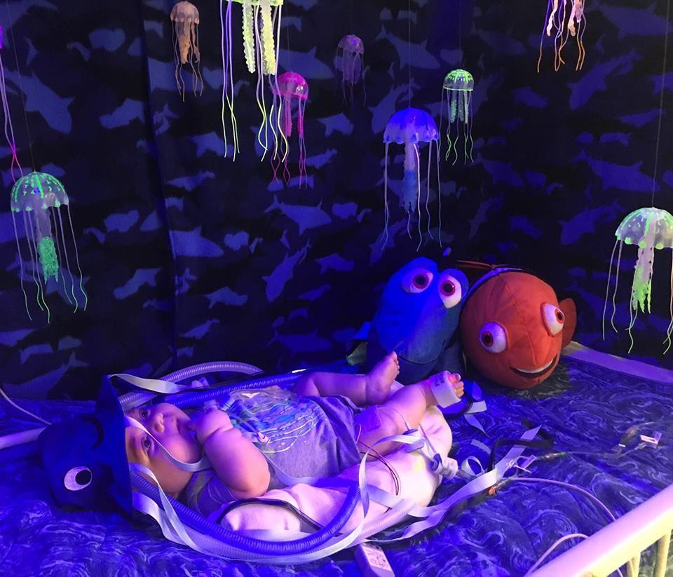 Bebê fantasiado de água-viva e decoração inspirada em Nemo (Foto: Reprodução Facebook)