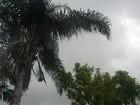 Previsão é de pancadas de chuva até domingo na Zona da Mata e Vertentes