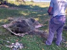 Polícia Ambiental apreende peixes e quilômetros de rede em Promissão