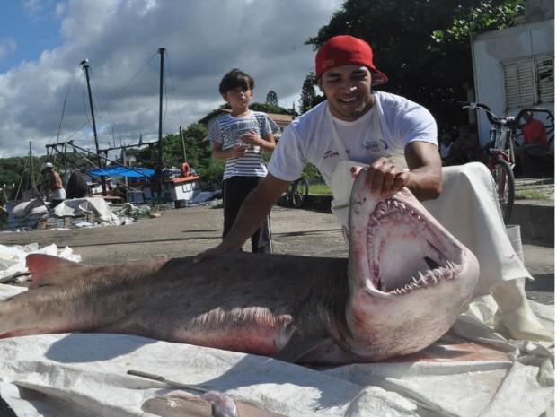 Tubarão pesava cerca de 100 quilos (Foto: Lelo Fotógrafo/ Arquivo pessoal)