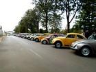 Encontro de carros antigos reúne colecionadores em Guarapuava