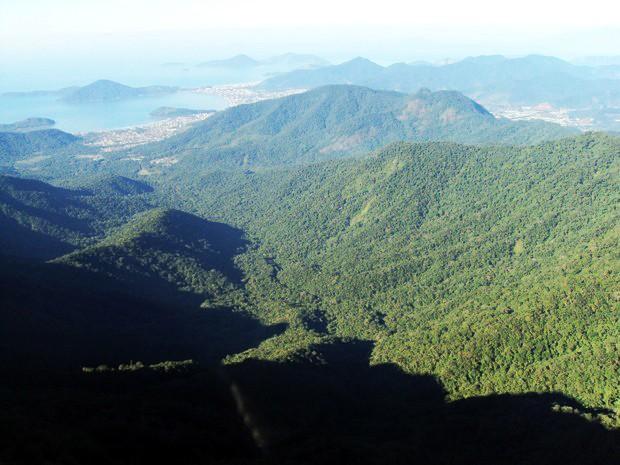 Parque Estadual da Serra do Mar protege Mata Atlântica do País (Foto: Divulgação/Fundação Florestal)