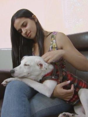 Algumas clínicas tem estrutura para o dono aocmpanhar o animal  (Foto: Reprodução / TV TEM)