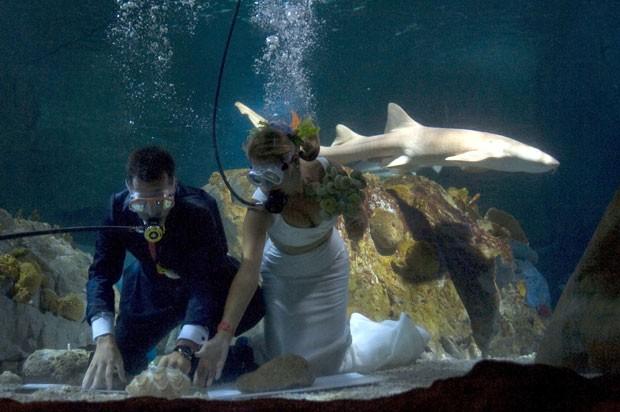Fran Calvo e Monica Fraile durante casamento em aquário na Espanha. (Foto: Jorge Guerrero/AFP)
