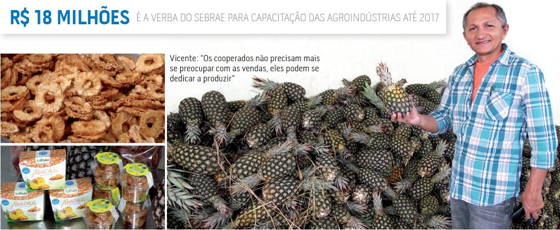 empreender_sebrae_agroindustria_produtor (Foto: Fernando Santos/Itaberaba Notícias)