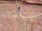 Sem proteção, homem anda a 457 m em corda bamba sobre rio nos EUA