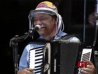 Dominguinhos (Foto: Reprodução / TV Globo)