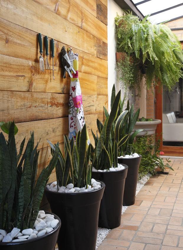 flores para jardim de inverno:plantas de casas jardim de inverno plantas de casas com jardim de Car