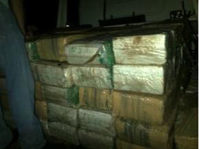 Droga foi encontrada embaixo de uma árvore, na zona rural de Ivaté (Foto: Divulgação/Polícia Militar)