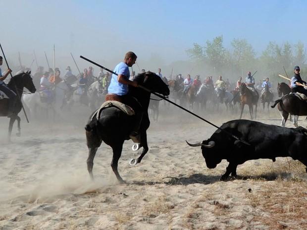 Foto de 2012 mostra o festival Toro de la Vega em Tordesilhas, perto de Valladolid, Espanha (Foto:  Israel López/AP)