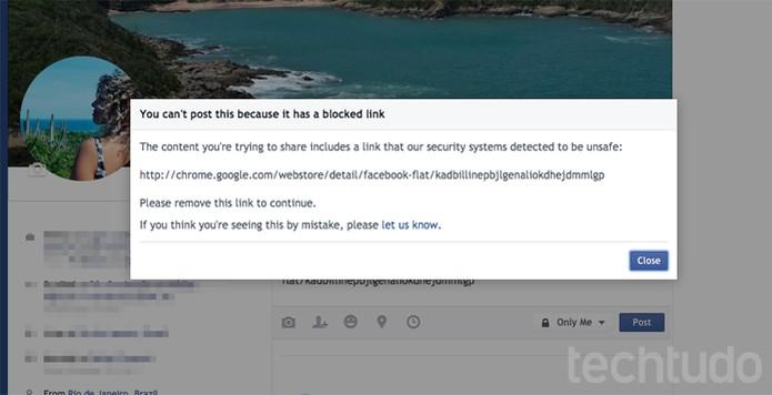 Facebook bloqueia links para plugin Facebook Flat na Chrome Web Store (Foto: Reprodução/TechTudo)