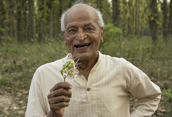 Quando está na natureza, Satish Kumar aprecia todo momento (Foto: © Haroldo Castro/ÉPOCA)