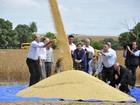 Cercada de políticos, Dilma lança colheita de soja em Mato Grosso