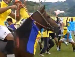 Harlem Shake do Sampaio Corrêa-RJ tem até cavalo em campo (Foto: Reprodução)