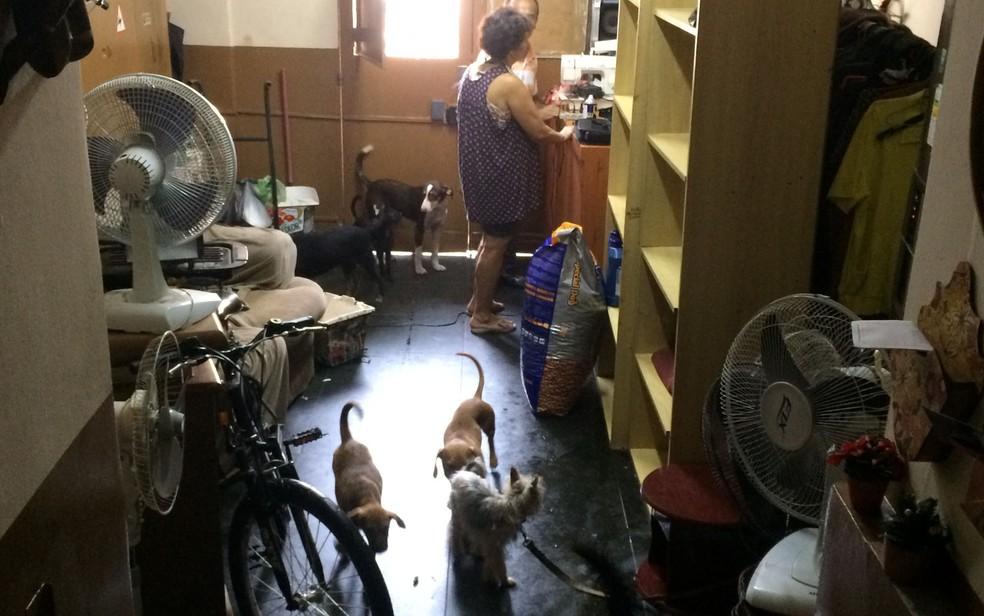 Casa de Dona Graça cheia de cães na Cracolândia (Foto: Paulo Toledo Piza/G1)