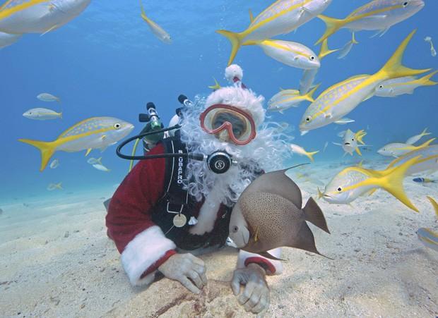 Mergulhador posa ao lado de peixes no Santuário Marino Nacional de Flórida Keys, nos EUA (Foto: Bob Care, Florida Keys News Bureau/Reuters)