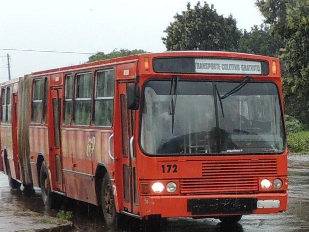 Os oito ônibus que circulam na cidade não cobram passagens dos moradores (Foto: Prefeitura de Ivaiporã/Divulgação)