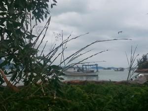Dia tem chance de chuva a qualquer hora em Santa Catarina  (Foto: Miliane Cristine Cordeiro/VC no G1)