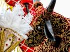 Com apresentação de boi e burrinha, Bairro do Recife saúda diversidade