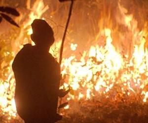 Brigadistas lutam para apagar queimadas espalhadas pelo Brasil (rede globo)