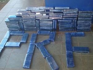 91 tabletes de maconha pesaram cerca de 100 quilos (Foto: PRF/Divulgação)