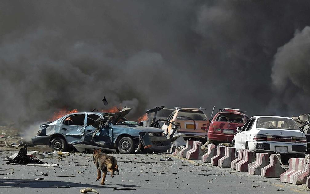Um cão corre perto de local de explosão em Cabul (Foto: Shah Marai / AFP Photo)