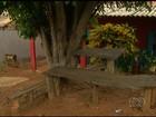 Menino é morto a tiros enquanto brincava na frente de casa, em Goiás
