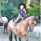 Menino de 5 anos perde égua e pede ajuda (Arquivo pessoal)
