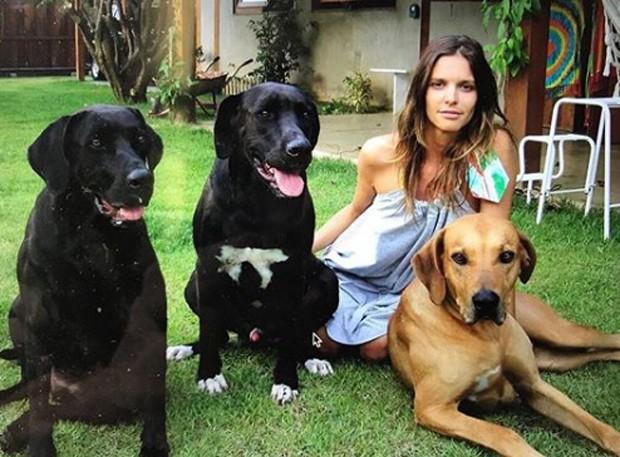 Fernanda Lima e seus cachorros em post no Instagram (Foto: Reprodução/Instagram)