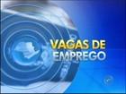 PATs da região de Itapetininga têm 371 vagas de emprego disponíveis