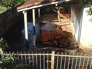 Casa atingida por caramelo foi interditada pela Defesa Civil (Foto: Reprodução / TV Tem)