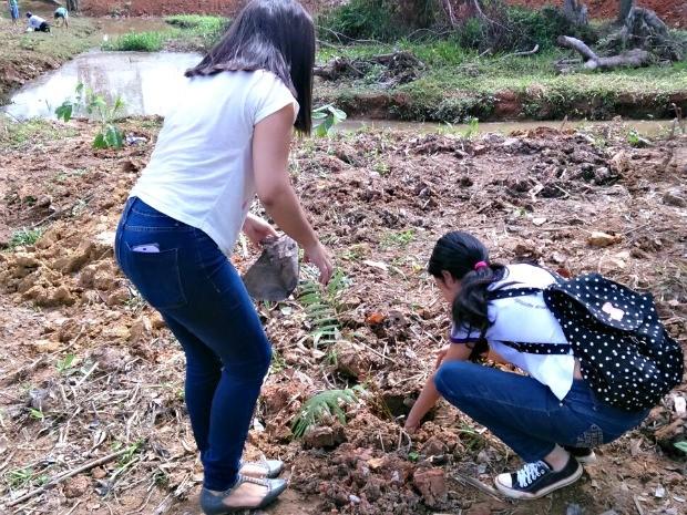 Ao todo 600 mudas foram plantadas em margem de igarapé de Rio Branco  (Foto: Kennedy Teodoro/Arquivo Pessoal)