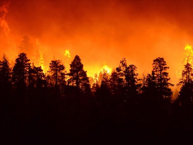 Incêndio atinge área florestal de montanhas, em San Bernardino, na Califórnia, na quinta (18) (Foto: John Valenzuela/The Sun via AP)