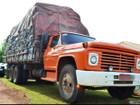 Polícia Ambiental apreende oito toneladas de carvão vegetal no PR