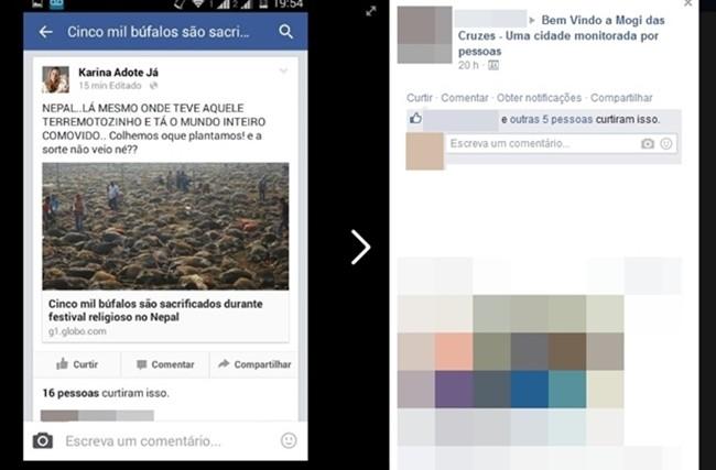 Conteúdo da página de vereadora de Mogi das Cruzes foi compartilhada por internautas revoltados 15 minutos após a postagem (Foto: Reprodução/Facebook)