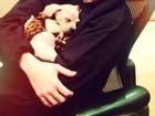 Miley Cyrus posta mais uma foto com novo cachorrinho de estimação