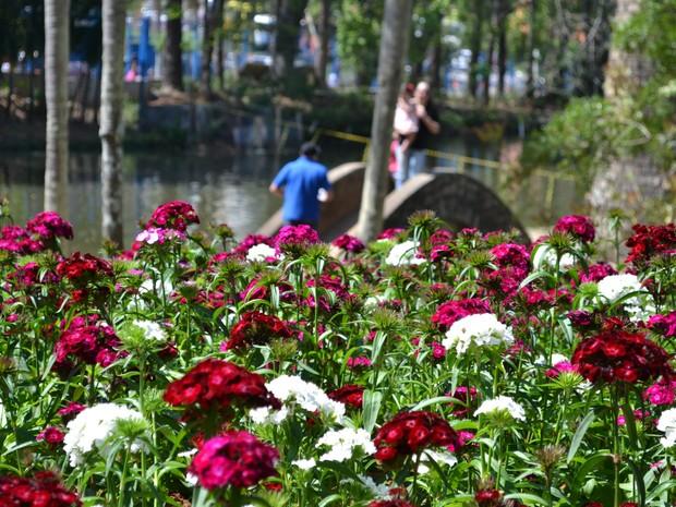 Festa das Flores e Morangos de Atibaia (Foto: Filipe Rodrigues/G1)