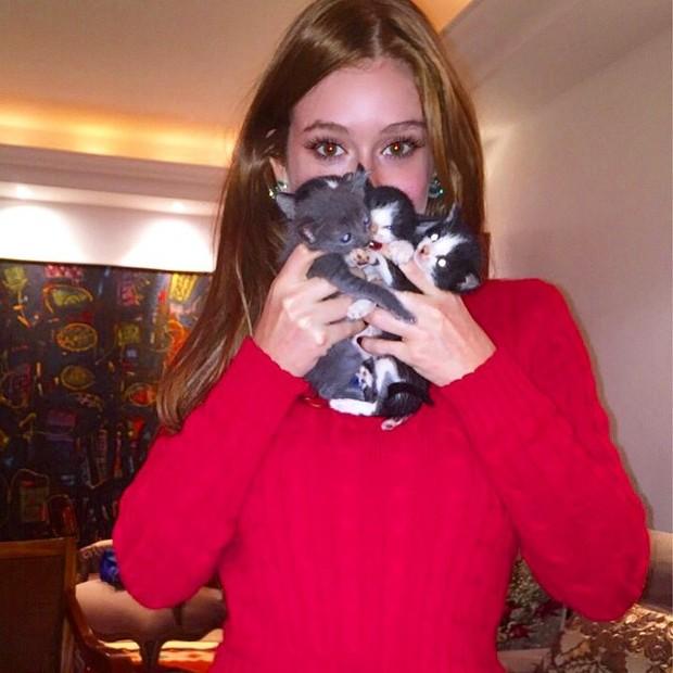 Marina Ruy Barbosa posa com gatinhos (Foto: Instagram/ Reprodução)