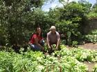 Projeto em distrito de Miraí incentiva cultivo de hortas no quintal de casa