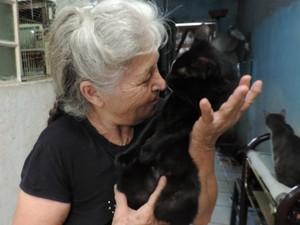 A idosa faz carinho no gato Negão, que teria salvado a vida dela (Foto: Caio Gomes Silveira/ G1)