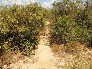Entrada do matagal usado por Rodrigo César para os estupros (Foto: Ricardo Araújo/G1)