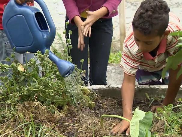 Além de ensinar as crianças a conhecerem vegetais comestíveis, o projeto melhorou as notas dos alunos (Foto: Globo)