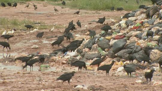 Com aterro interditado, Prefeitura de Leme joga lixo em terreno ao lado