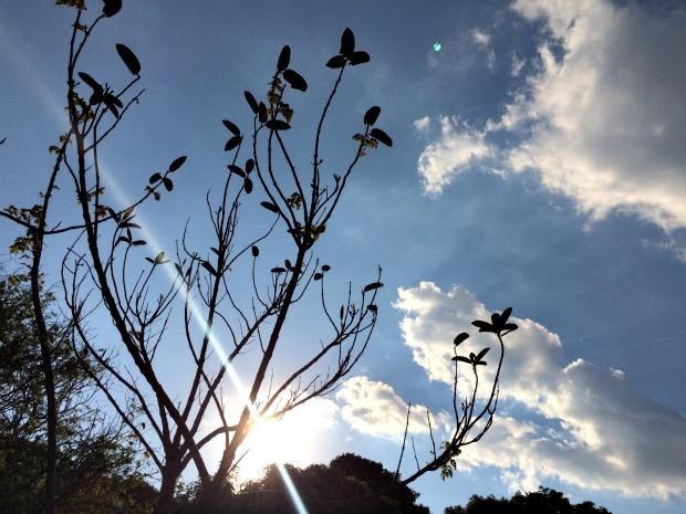 Previsão é de temperaturas elevados em MS, diz Inmet (Foto: Isabela Cavalcante / G1 MS)