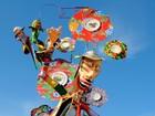 Confira cobertura especial do Carnaval (Arquivo / Degiovani Lopes da Silva)