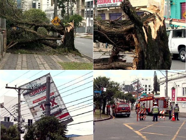 Temporal causou queda de árvores e placas em Curitiba (Foto: Reprodução / RPC TV)