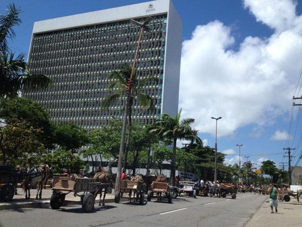 Carroceiros seguem em direção à Prefeitura do Recife (Foto: Chico Feitosa/globoesporte.com)